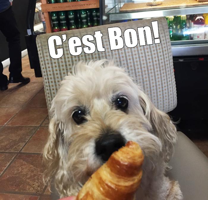 croissant-jazz